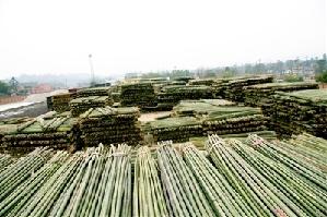 科学发展 带来效益双赢 生态效益是森林工程建设的目的,而经济效益图片